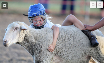 Mutton bustin' 'good time' at Clay County Fair